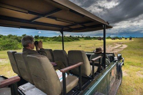 Muchenje Safari Lodge safari
