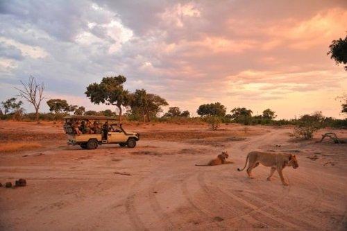 Somalisa Camp 014